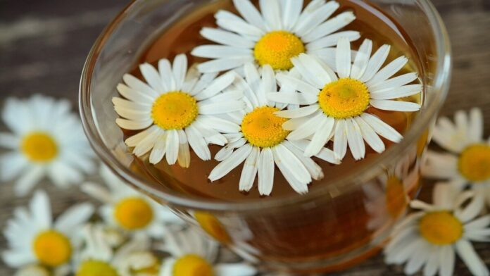 Naturopathy or better known as Nature Cure